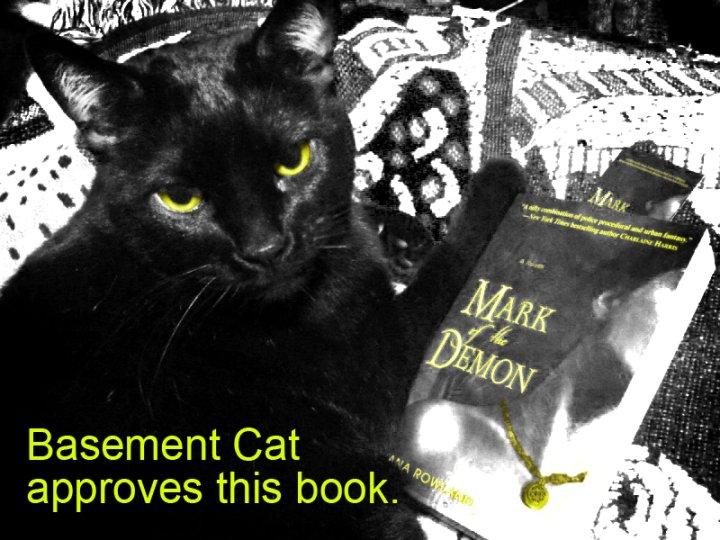 All hail Basement Cat!